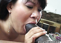 Magnificent Asian grown-up is having interracial lovemaking imperil